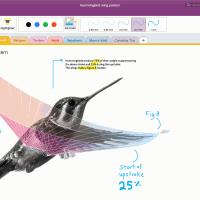 Microsoft выпустила OneNote Importer Tool для Mac