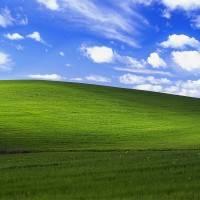 Microsoft признана одной из самых зеленых компаний