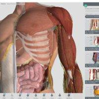 На Windows 10 вышло популярное приложение Complete Anatomy
