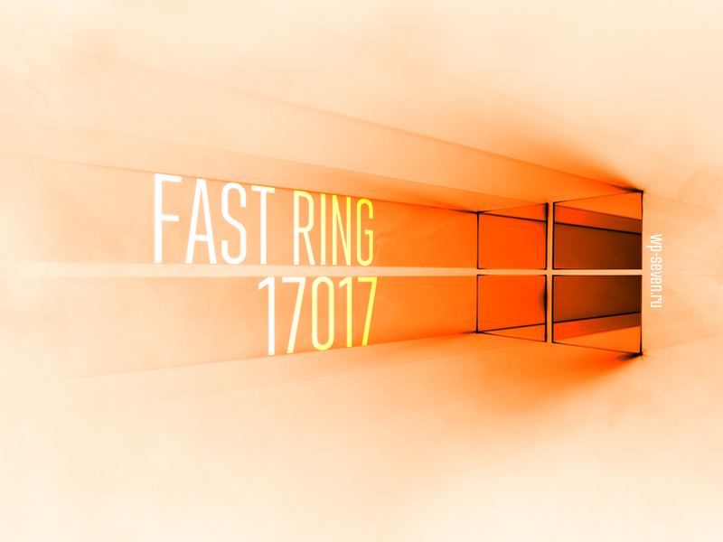17017 Fast Ring