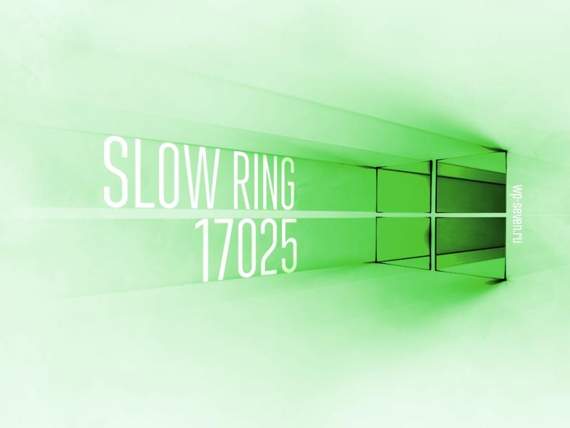 Slow Ring 17025