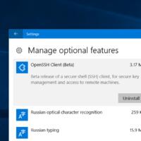 В Windows 10 появился нативный OpenSSH-клиент