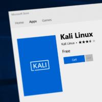 В Microsoft Store появился дистрибутив Kali Linux