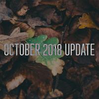 Redstone 5 получит название October 2018 Update