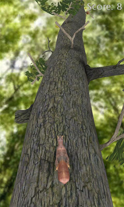 Squirrel для Windows Phone