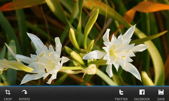 Скачать Clever Camera для Nokia Lumia 505