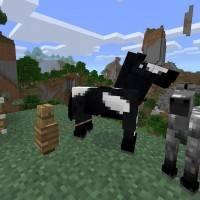 Вышло обновление Friendly Update для карманных изданий Minecraft и Windows 10-версии