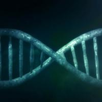 Ученые успешно записали, а потом восстановили информацию в ДНК