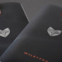 Открыты предзаказы на Wileyfox Pro с Windows 10 Mobile