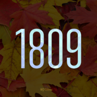 Вышло накопительное обновление для Windows 10 October 2019 Update