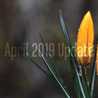 Закончилась поддержка Windows 10 April 2018 Update