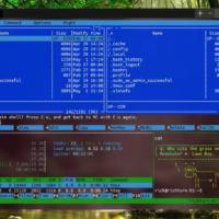 Windows Terminal появилось в Microsoft Store