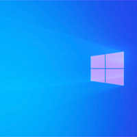 Windows 10 May 2019 Update установлена на 56.6% компьютеров