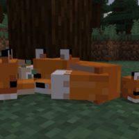 Вышло обновление Minecraft 1.13.0