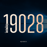 Вышла сборка 19028 в Fast Ring