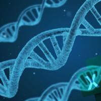 Ученым пришлось переименовать 27 генов человека из-за алгоритмов Excel