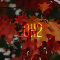 Windows 10 October 2020 Update доступно в Release Preview